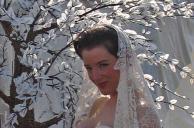 Wedding Trees