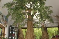 Creating a Tree
